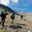 Hike in Kamchatka valley. — Stock Photo #17982421