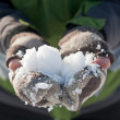 Snow on hands. — Stock Photo