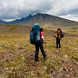 Trekking on Kamchatka. — Stock Photo