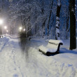 Park covered with snow at night. — Lizenzfreies Foto