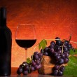 Still Life With Bottle Of Wine And Grapes — Stock Photo