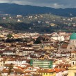View Of Florence With Synagogue - Stock Photo