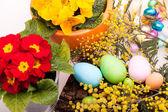 Sugar Easter Eggs — Stock Photo