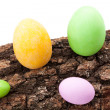 Easter Eggs On Bark — Stock Photo