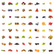 Collage Fruits — Stock Photo