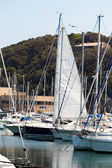 Yachts Moored At Punta Ala, Tuscany — Stock Photo