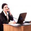 Nice Businesswoman Speaking On The Phone — Stok fotoğraf