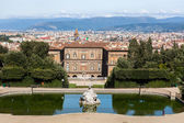 Palazzo Pitti With Florence In The Background — Stock Photo
