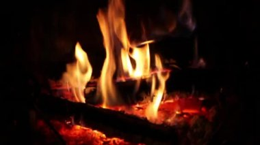 Fire Burning In The Fireplace — Stock Video