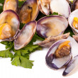 Stock Photo: Clams Stewed