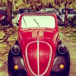 Постер, плакат: Antique Models Fiat 500 Topolino