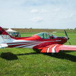 Постер, плакат: Pioneer 300 Hawk Ultralight Airplane