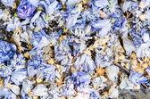 Background of colourful blue potpourri — Stock Photo