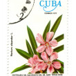 Old postage stamp from Cuba with flower — Stock Photo #11905457