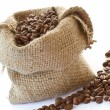 Coffee beans — Stock Photo #13210184