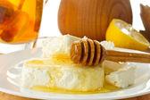 Milk cottage cheese with honey — Stock Photo