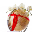 The whole world as a gift — Stock Photo #17763001