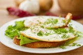 Toast with a fried egg — Stock Photo