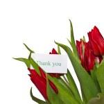 Red tulips — Stock Photo #21356611