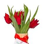 Red tulips — Stock Photo #21356645