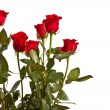 Red Rose — Stock Photo #22037939