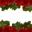 Frame of red roses — Stock Photo #22037957