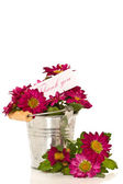 Merci à fleurs — Photo