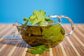 Green tea with fresh mint — Stock Photo
