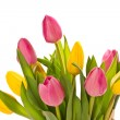 Beautiful bouquet of tulips - Stok fotoğraf
