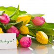 Stock Photo: Beautiful bouquet of tulips