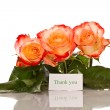 Thanks to the blooming roses — Stock Photo