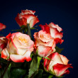 Stock Photo: Bouquet of beautiful roses