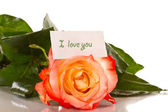 Declaration of love with roses — Stock Photo