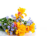 Beautiful spring bouquet of flowers — Stock Photo