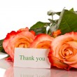 Thanks to the blooming roses — Stock Photo #24987965