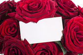 Beautiful roses with a blank — Stock Photo