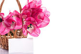 Różowe tulipany w kosz — Zdjęcie stockowe