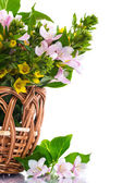 Beautiful summer bouquet in a wicker basket — Stock Photo