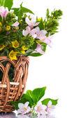 Beautiful summer bouquet in a wicker basket — Stock Photo