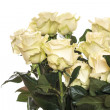 Stock Photo: Beautiful yellow roses