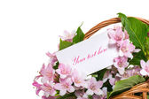 Weigel beautiful flowers in a basket — Stock Photo
