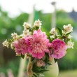 Jasmine bouquet with peonies — Stock Photo #26499413