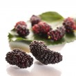 Mulberry — Stock Photo #26786235