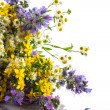 Bouquet of summer flowers — Stock Photo #26786287