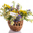 Stock Photo: Bouquet of summer flowers