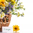 Bouquet of summer flowers — Foto Stock