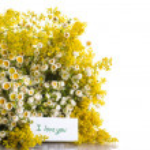 Summer bouquet of wild flowers — Stock Photo #26849267
