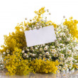 Summer bouquet of wild flowers — Stock Photo #26849281