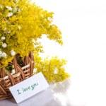 Summer bouquet of wild flowers — Stock Photo #26849287