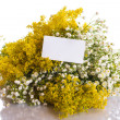 Summer bouquet of wild flowers — Stock Photo